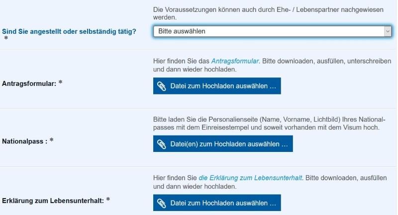 Ausschnitt_Online-Formular_Aufenthalt_EU