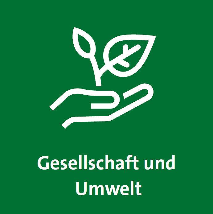 Icon Gesellschaft und Umwelt