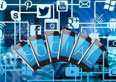 Kater Joey, Social Intranet und Instagram: erfolgreiche interne Kommunikation
